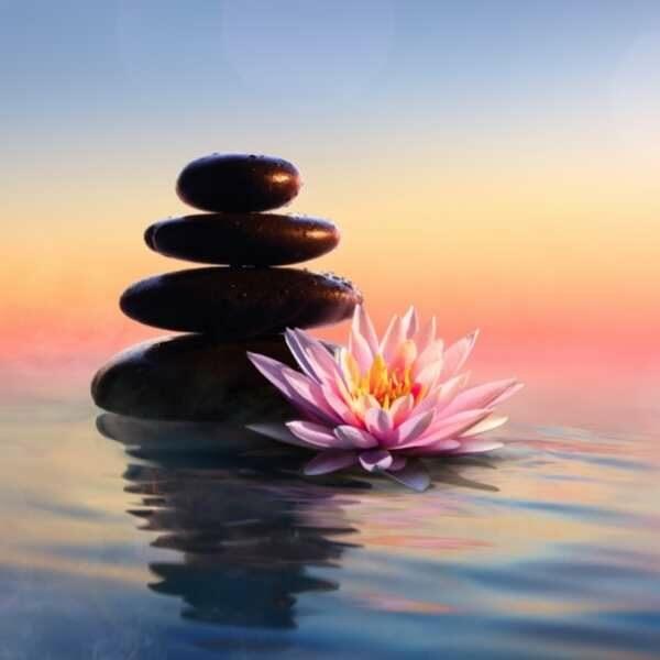 meditacie